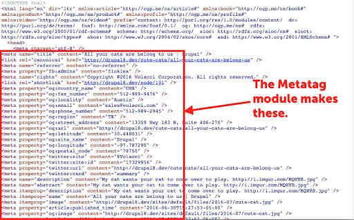 what metatags look like in web code